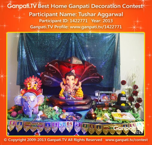 Tushar Aggarwal Ganpati Decoration