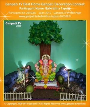 Balkrishna Tapase Ganpati Decoration