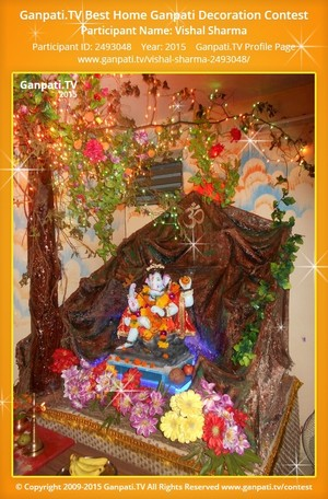 Vishal Sharma Ganpati Decoration