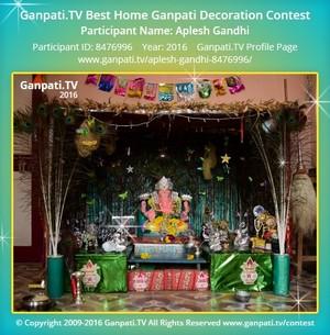 Aplesh Gandhi Ganpati Decoration