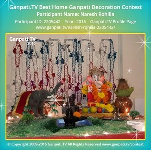 Naresh Rohilla Ganpati Decoration
